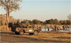 Sundowner, Machaba Camp, Botswana, buchbar bei Iwanowski's Reisen