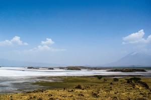 Ufer des Natronsees in Tansania. iwanowski.blog