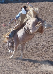 Medicine Lodge Rodeo. iwanowski.blog