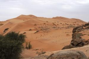 Gobabeb_Namib_A. Rosenbohm