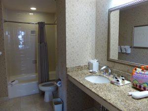 7-NO-WhitneyHotel-Badezimmer