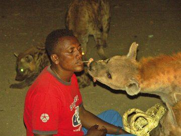 Hyänenmann in Harar